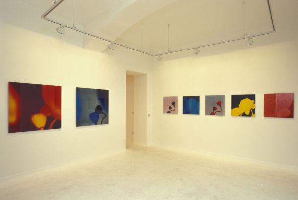 L.M.F. exhibition view Galleria Carbone Turin 1999