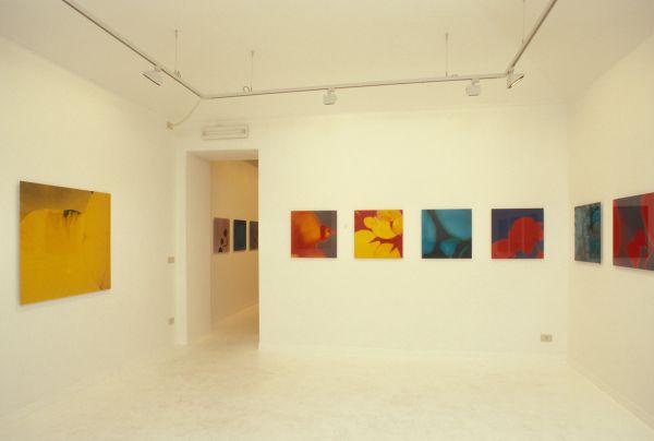 L.M.F. exhibition view Galleria Carbone 1999