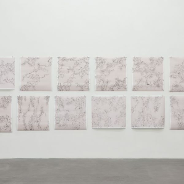 Inframondo Emma Kunz Grotte 2019 graphite on graph paper twenty drawings 80 x 75 cm each Exhibition view Number Rhythm Transformation Contemporary Dialogues with Emma Kunz Kunsthalle Ziegelhütte Appenzell 2020